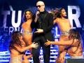 Pitbull 17